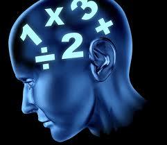 brain computations