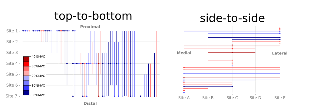 Visual depiction of motor unit territories. Circles indicate target motor unit was recorded from micro-electrode at Site 1, 4, 7 (left panel) or Site A, C, E (right panel). Vertical and horizontal lines indicate the territory of each recorded motor unit based on spike-triggered averages. Note that many motor units span the full length or width of the muscle.
