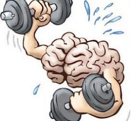 exercise fatigue